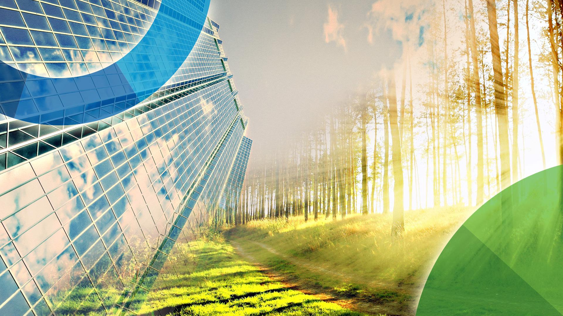 Przedsiębiorstwo a środowisko